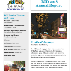 2018 BID Annual Report